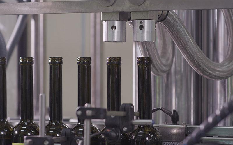 El sector olivarero español pide proteger la producción de la plaga de la Xylella Fastidiosa