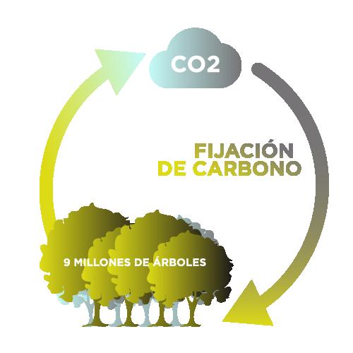 carbon sequestering