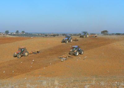 LAND PREPARATION (JAN TO MAY)